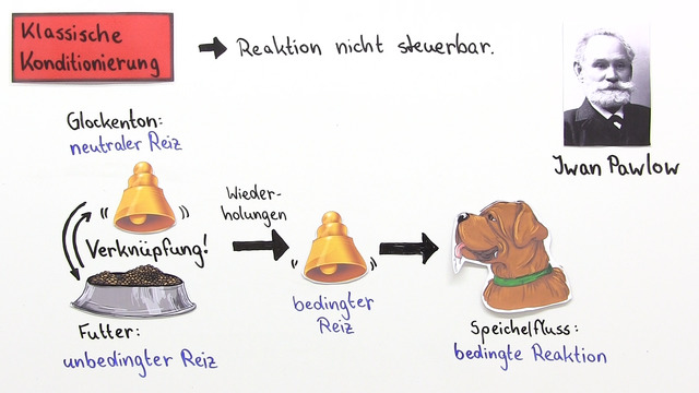 Konditionierung