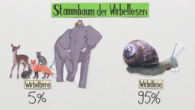 Systematik der Wirbellosen
