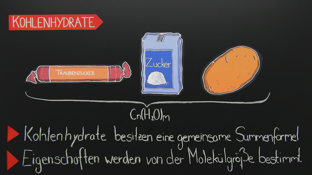 Grundbaustoffe der Nahrung – Kohlenhydrate, Eiweiße und Fette