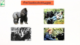 Methoden der Verhaltensforschung