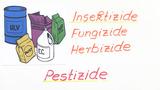 Nutzen und Schaden von Pestiziden