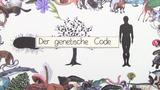 Genetischer Code – Eigenschaften und Bedeutung