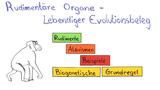 Rudimentäre Organe – lebendiger Evolutionsbeleg