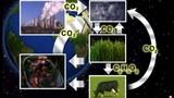 Stoffkreisläufe in der Natur