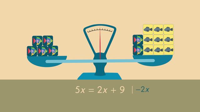 Gleichungen mit Variablen auf beiden Seiten lösen