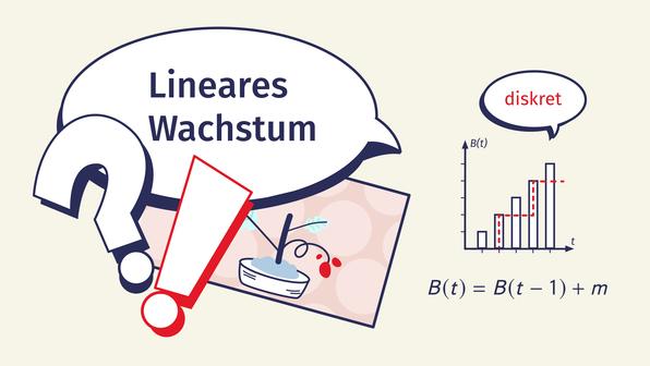 Lineares Wachstum – Überblick