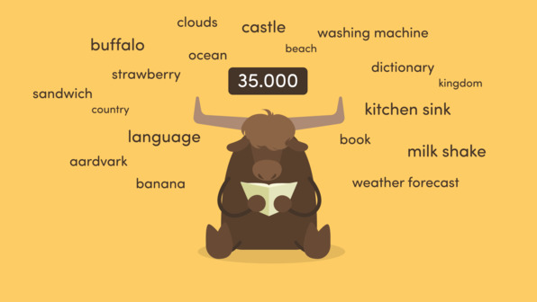 How to learn vocabulary – Wie lerne ich Vokabeln?
