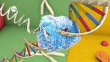 Proteinbiosynthese - Basiswissen