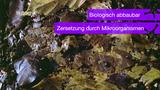 Biologisch abbaubare und biologisch nicht abbaubare Materialien