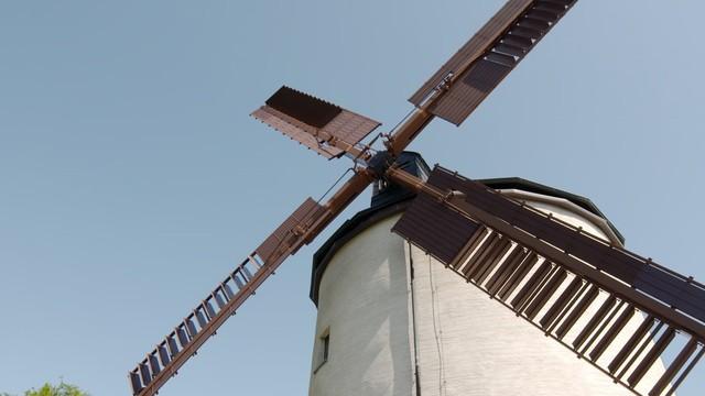 Die Mühle und der Müller