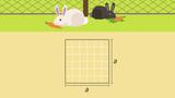 Flächeninhalt und Umfang von Quadraten