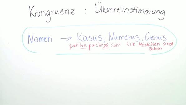Kongruenz von Substantiven und Adjektiven