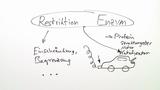 Restriktionsenzyme