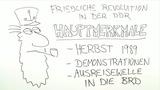 Die friedliche Revolution in der DDR 1989