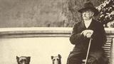 Die politischen Grundprinzipien Bismarcks