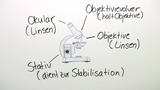 Mikroskop – Aufbau und Handhabung
