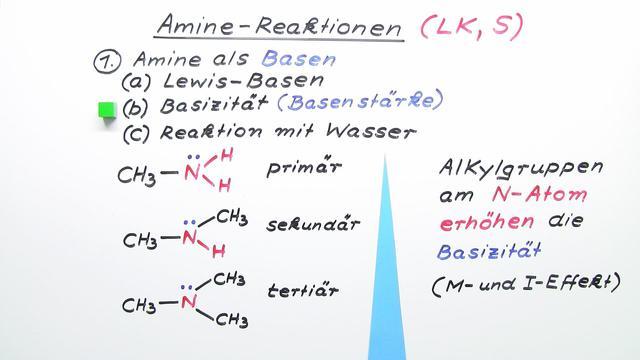 Amine – typische Reaktionen (Vertiefungswissen)
