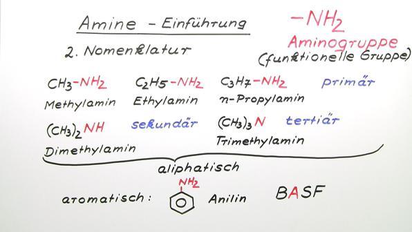 316 amine einf%c3%bchrung vorschaubild