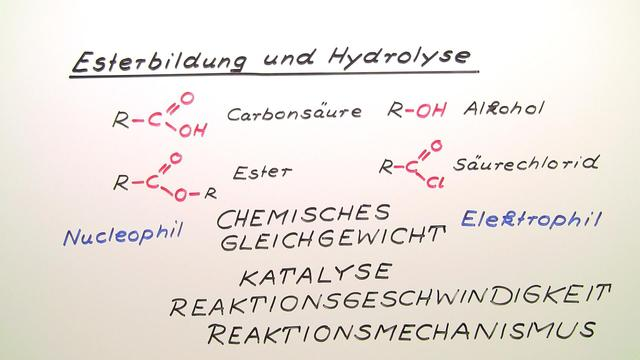 Esterbildung und Hydrolyse