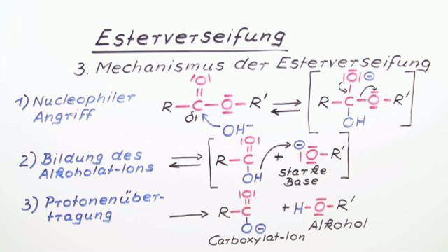 Esterverseifung – Mechanismus im sauren und basischen Milieu