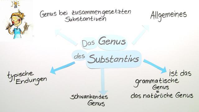 Genus des Substantivs