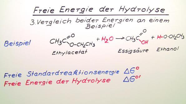 Freie Energie der Hydrolyse