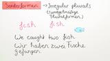 Substantiv – Unregelmäßige Pluralformen