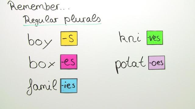 Substantiv – Pluralformen (Übungsvideo)