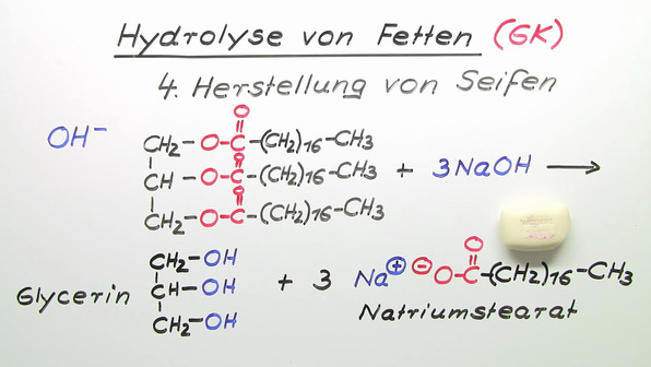 Hydrolyse von Fetten (Vertiefungswissen)
