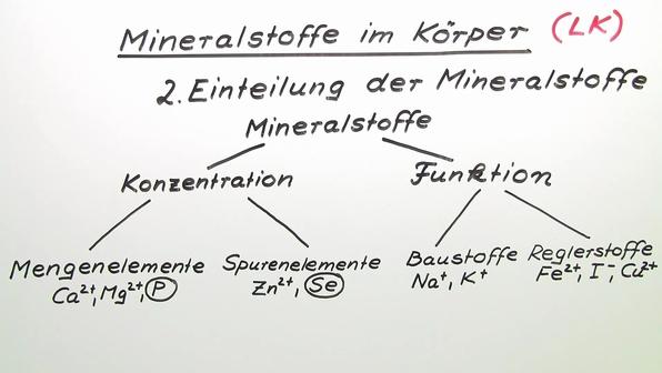 363  mineralstoffe im k%c3%b6rper  lk vorschaubild