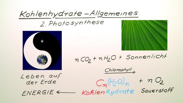 Kohlenhydrate – Einführung