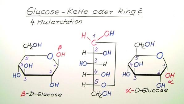 Glucose – Kette oder Ring?