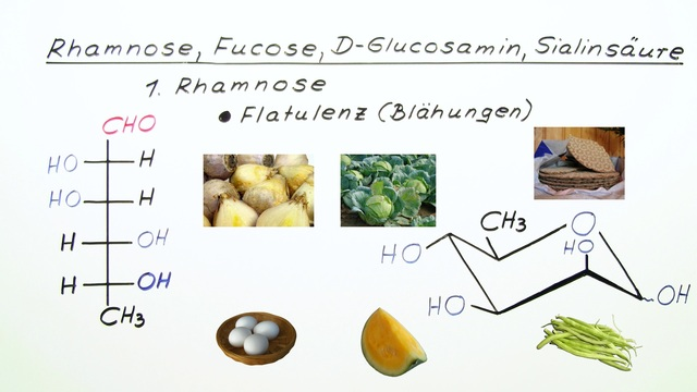 Rhamnose, Fucose, D-Glucosamin, Sialinsäure