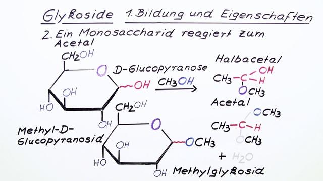 Glykoside – Bildung und Eigenschaften