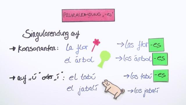 Der Plural - El plural