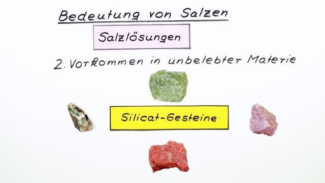 Bedeutung von Salzen