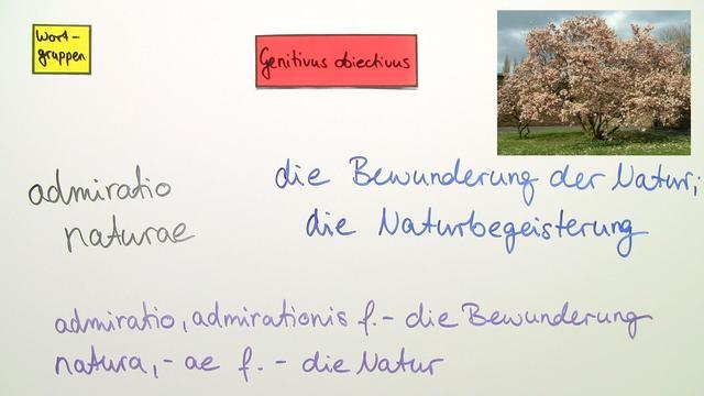 Genitivus subiectivus und obiectivus - Übungen zur Übersetzung 2