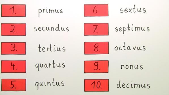 Die ordinalzahlen   ordinalia