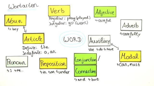 Grammatikbegriffe: Wortarten und Zahlen
