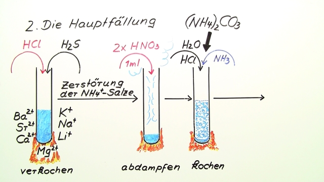 Nachweise der Ammoniumcarbonat-Gruppe