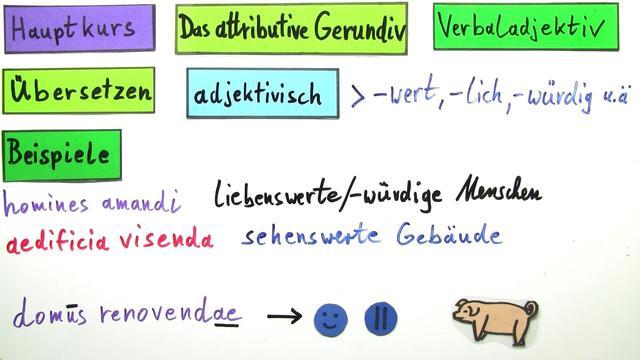 Gerundivum als Attribut – Latein online lernen