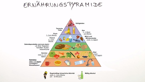 Zusammensetzung Der Nahrung