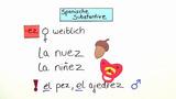 Substantive mit Konsonanten-Endung