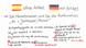 Kein Artikel im Spanischen - Bestimmter Artikel im Deutschen