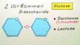 Glucose und Fructose