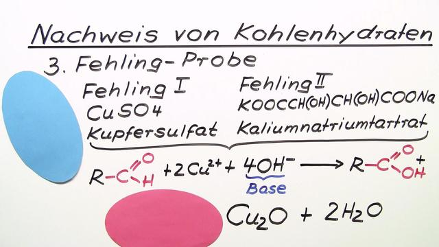 Nachweis von Kohlenhydraten