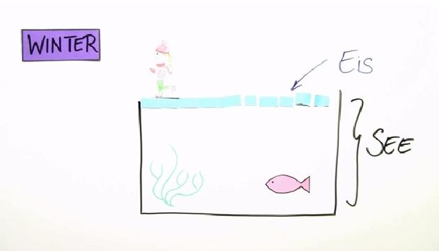 der see im jahresverlauf biologie online lernen. Black Bedroom Furniture Sets. Home Design Ideas