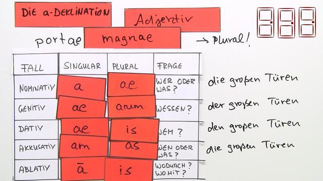 Adjektive – a-Deklination – Latein online lernen
