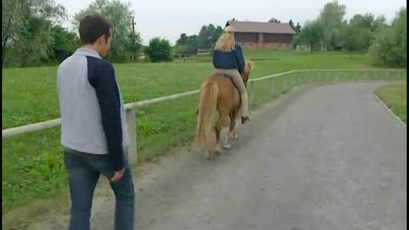 Willi und die Ponys - Welche Gangarten gibt es?