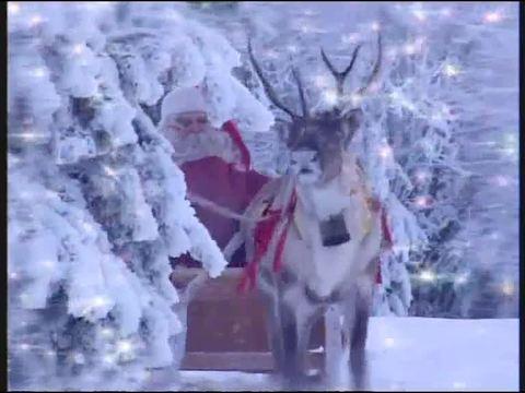 Weihnachten bei Willi